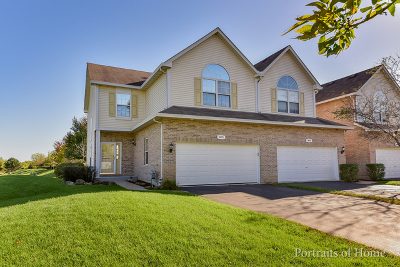 Bolingbrook Condo/Townhouse New: 1071 Lily Field Lane #1071