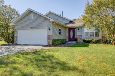 Plainfield Single Family Home New: 24146 Primrose Circle