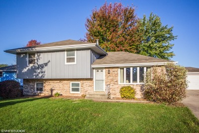 Will County Single Family Home New: 3601 Judy Court