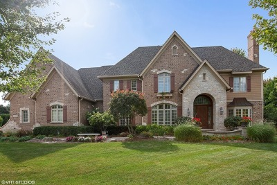 Warrenville Single Family Home For Sale: 3s408 Saddle Ridge Court