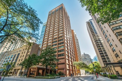 Chicago Condo/Townhouse New: 247 East Chestnut Street #1503