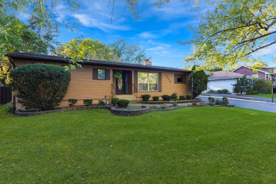 Westmont Single Family Home For Sale: 4016 North Washington Street