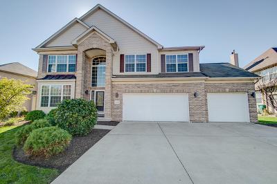 Shorewood Single Family Home New: 25239 Balmoral Drive