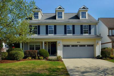 Bensenville Single Family Home For Sale: 930 Breiter Court