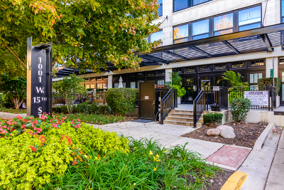 Chicago Condo/Townhouse New: 1001 West 15th Street #416
