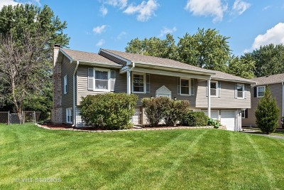 Buffalo Grove Single Family Home New: 600 Twisted Oak Lane