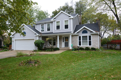 Bloomingdale Single Family Home For Sale: 138 North Manchester Lane