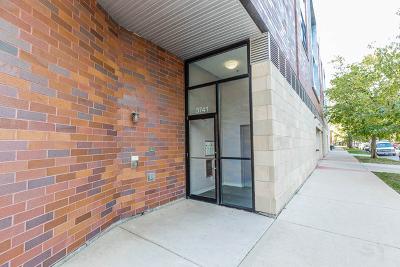 Chicago Condo/Townhouse New: 3741 North Wolcott Avenue #6