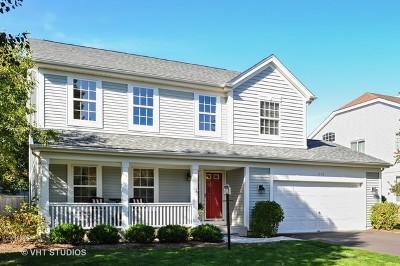 Mundelein Single Family Home New: 316 Lenox Lane