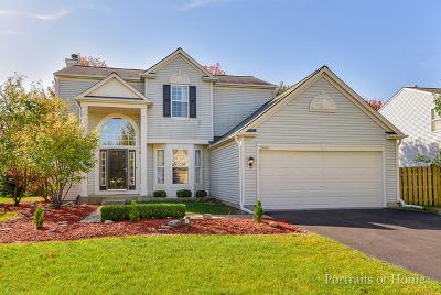 Plainfield Single Family Home New: 25003 Edison Lane