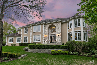 Naperville Single Family Home New: 2232 River Woods Drive