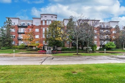 Buffalo Grove Condo/Townhouse New: 840 Weidner Road #504