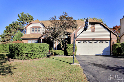 Buffalo Grove Single Family Home New: 785 Vernon Court South