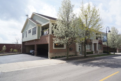 Mokena Condo/Townhouse Contingent: 10935 Front Street #1A