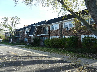 Downers Grove Condo/Townhouse New: 2431 Ogden Avenue #2