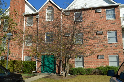 Lake In The Hills Condo/Townhouse Contingent: 1332 Cunat Court #2B