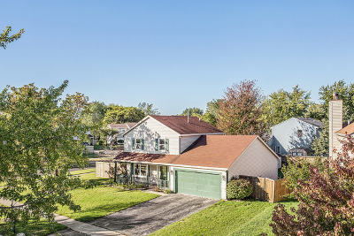 Bolingbrook Single Family Home New: 217 Green Mountain Drive