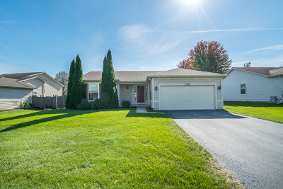 Plainfield Single Family Home New: 7202 Applegate Drive