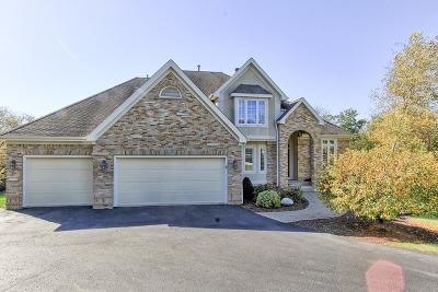 Spring Grove Single Family Home New: 7209 Ridge Court