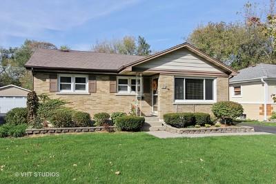 Mundelein Single Family Home New: 912 McKinley Avenue