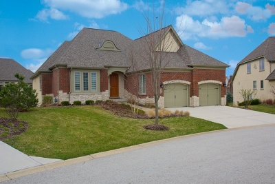 Burr Ridge Single Family Home For Sale: 7974 Savoy Club Court