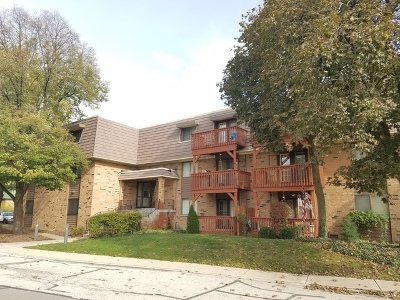 Aurora Condo/Townhouse New: 1925 Tall Oaks Drive #2706