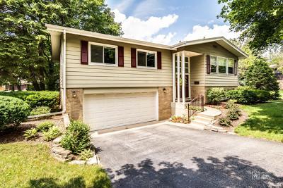 Arlington Heights Single Family Home New: 322 North Harvard Avenue