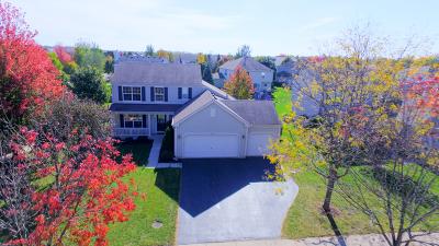 Aurora Single Family Home New: 530 Sumac Drive