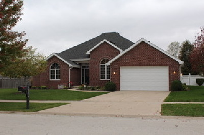 Plainfield Single Family Home New: 16234 South Dan Oconnell Drive