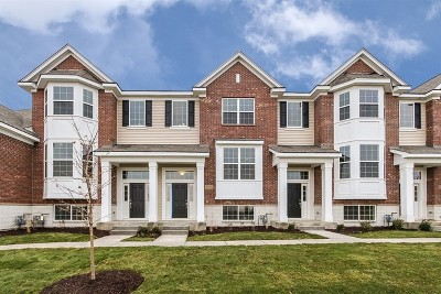 Naperville Condo/Townhouse Contingent: 2955 Madison Lot#28.03 Drive
