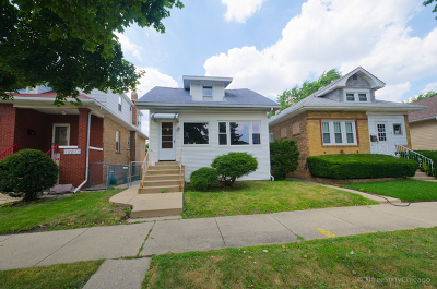 Chicago Single Family Home New: 3740 North Oketo Avenue
