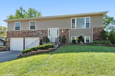 Bolingbrook Single Family Home New: 705 North Ashbury Avenue