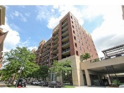 Chicago Condo/Townhouse New: 811 West 15th Place #805