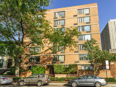 Chicago Condo/Townhouse New: 2007 North Sedgwick Street #105
