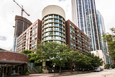 Cook County Condo/Townhouse New: 480 North McClurg Court #1102
