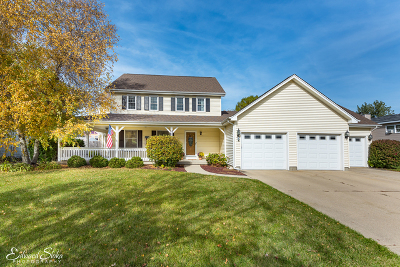 McHenry Single Family Home New: 3304 West Bretons Drive