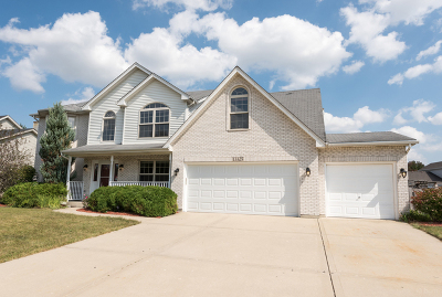 Plainfield Single Family Home New: 13325 Mary Lee Court