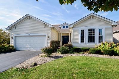 Oswego Single Family Home Contingent: 401 Lake Court