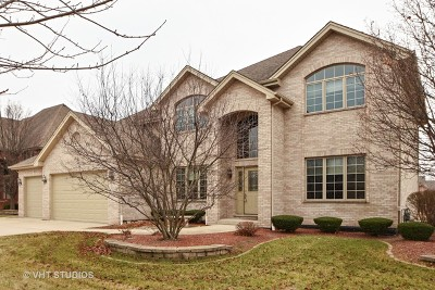 Orland Park Single Family Home For Sale: 8751 West 141st Street