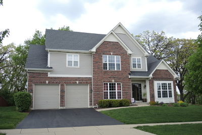 South Elgin Single Family Home For Sale: 1525 Prairie Pointe Drive