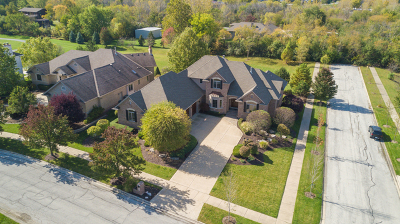 Orland Park Single Family Home For Sale: 17204 Deer Creek Drive