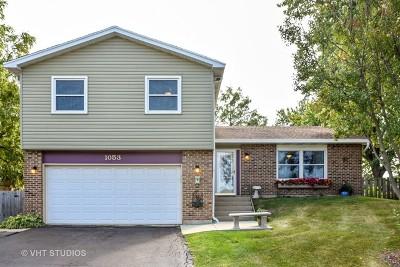 Bartlett Single Family Home For Sale: 1053 Knollwood Lane