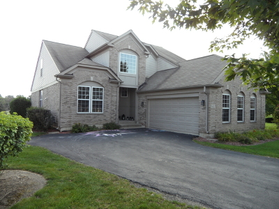 Orland Park Single Family Home For Sale: 9451 Dunmurry Drive