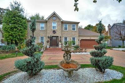 Bolingbrook Single Family Home For Sale: 743 Dunham Lane