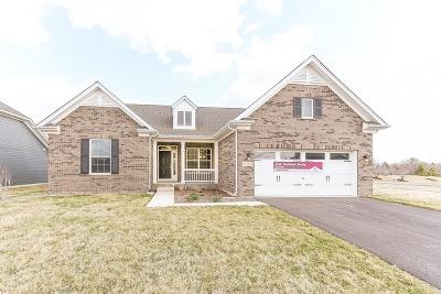 Hoffman Estates Single Family Home For Sale: 3598 Harold Lot# 22 Circle