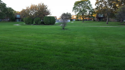 Westmont Condo/Townhouse Contingent: 18w140 Suffield Court #106G