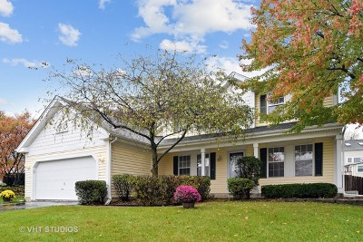 Streamwood Single Family Home For Sale: 35 White Fence Trail