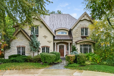 Hinsdale Single Family Home For Sale: 5531 South Park Avenue