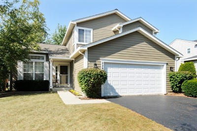 Bolingbrook Single Family Home For Sale: 229 Woodlet Lane