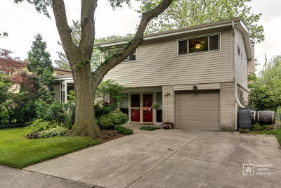 Wilmette Single Family Home For Sale: 408 Brookside Drive